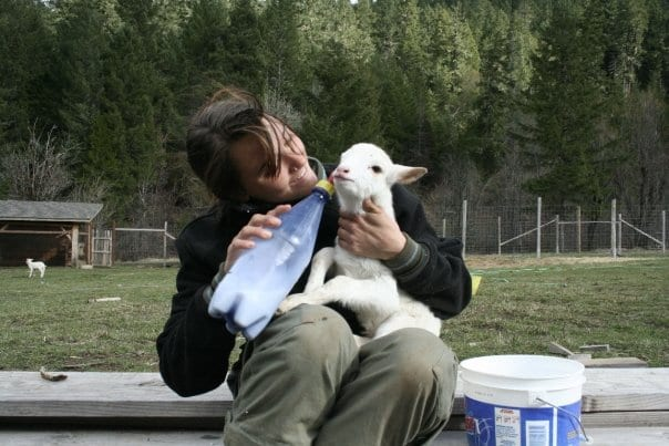girl with lamb and bottle of milk on farm