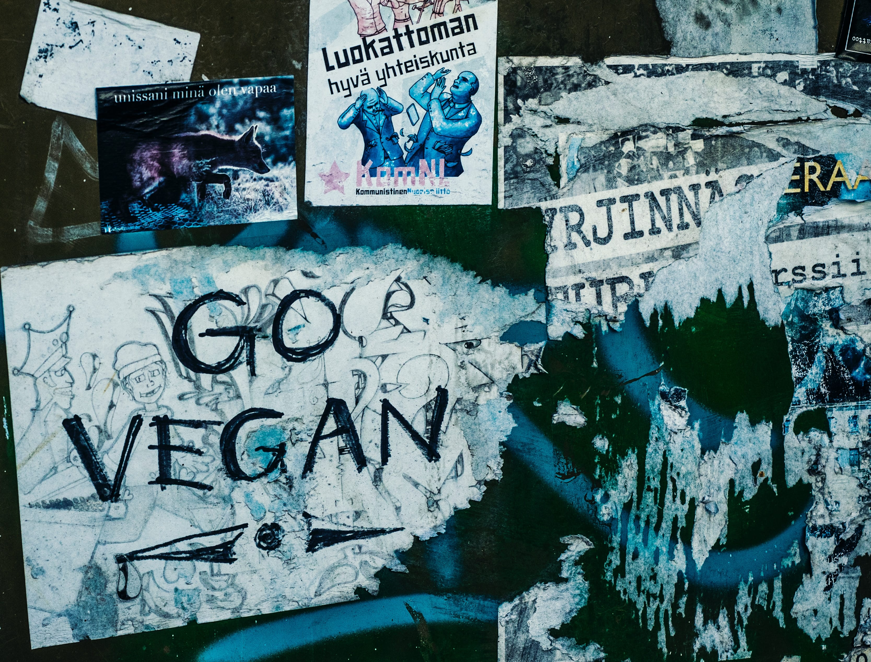go vegan vandalism on wall in finland