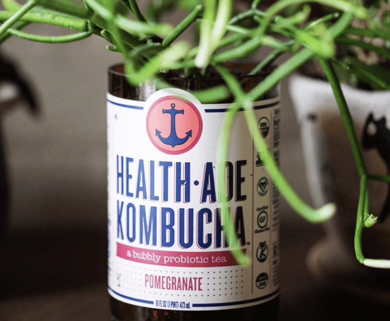 kombucha with leaves growing