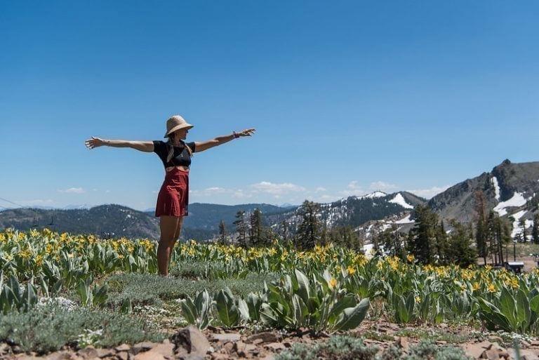 squaw-mountaintop-sunshine-flowers-ali