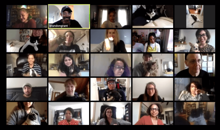 moth zoom chat